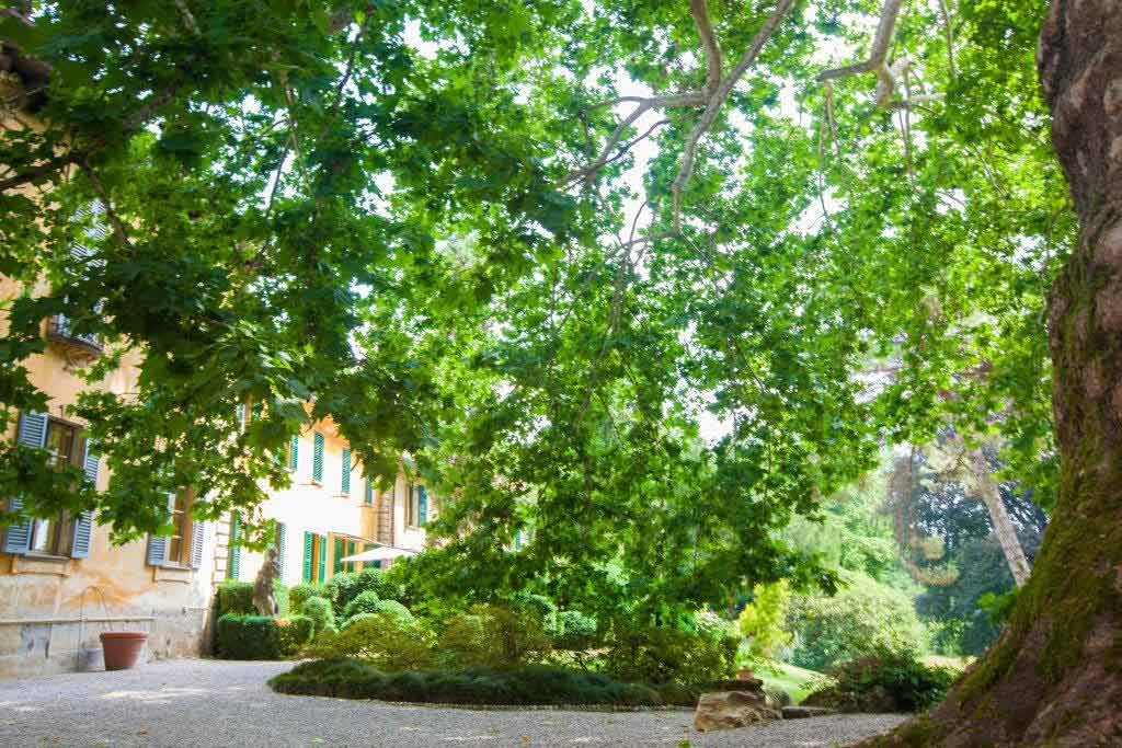 20_VillaSommiPicenardi_Giardino_Eng-albero
